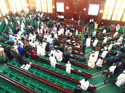 Image result for nigeria house of representatives members