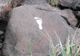 Bina-Footprints-Niger